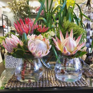 Selection of Protea